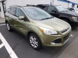2013 Ginger Ale Metallic Ford Escape SEL 1.6L EcoBoost 4WD #96592498