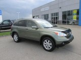 2009 Green Tea Metallic Honda CR-V EX-L 4WD #96592429