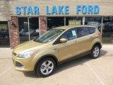 2014 Karat Gold Ford Escape SE 1.6L EcoBoost 4WD #96648923