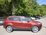 2014 Sunset Ford Escape Titanium 2.0L EcoBoost 4WD #96805095