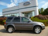 2006 Dark Shadow Grey Metallic Ford Escape Limited 4WD #96879764