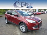 2014 Sunset Ford Escape SE 2.0L EcoBoost 4WD #96911365