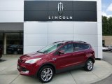 2013 Ruby Red Metallic Ford Escape SEL 2.0L EcoBoost 4WD #96953743