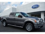 2014 Sterling Grey Ford F150 XLT SuperCrew #96997779