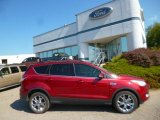 2013 Ruby Red Metallic Ford Escape SEL 2.0L EcoBoost 4WD #96997558
