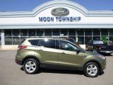 2013 Ginger Ale Metallic Ford Escape SE 2.0L EcoBoost 4WD #97075608
