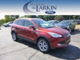 2014 Sunset Ford Escape Titanium 2.0L EcoBoost #97110422
