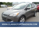 2014 Sterling Gray Ford Escape SE 1.6L EcoBoost #97110671