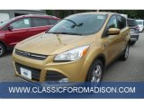 2014 Karat Gold Ford Escape SE 1.6L EcoBoost #97110669