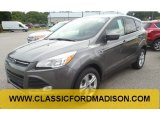 2014 Sterling Gray Ford Escape SE 1.6L EcoBoost #97110667