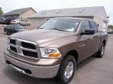 Dodge Ram 1500 2009 Data, Info and Specs