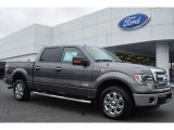 2014 Sterling Grey Ford F150 XLT SuperCrew #97146666