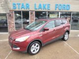 2014 Sunset Ford Escape SE 2.0L EcoBoost 4WD #97188986