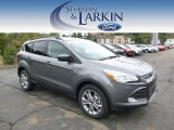 2014 Sterling Gray Ford Escape SE 2.0L EcoBoost 4WD #97229203