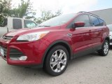 2014 Ruby Red Ford Escape SE 1.6L EcoBoost #97475395