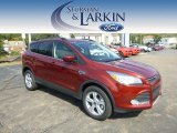 2014 Sunset Ford Escape SE 1.6L EcoBoost 4WD #97475428