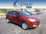 2014 Sunset Ford Escape SE 1.6L EcoBoost 4WD #97475426