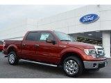 2014 Sunset Ford F150 XLT SuperCrew #97561933