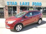 2014 Sunset Ford Escape SE 2.0L EcoBoost 4WD #97562219