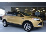 2014 Karat Gold Ford Escape SE 1.6L EcoBoost 4WD #97645623