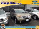 2013 Ginger Ale Metallic Ford Explorer XLT 4WD #97784038