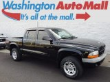 2003 Black Dodge Dakota Sport Quad Cab 4x4 #97863658
