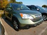 2008 Green Tea Metallic Honda CR-V EX-L 4WD #97864029