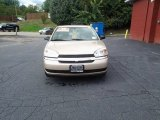 2005 Light Driftwood Metallic Chevrolet Malibu LS V6 Sedan #97864009