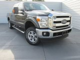2015 Magnetic Ford F250 Super Duty XLT Crew Cab 4x4 #98150169