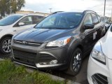 2014 Sterling Gray Ford Escape SE 2.0L EcoBoost 4WD #98150141
