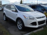 2014 White Platinum Ford Escape Titanium 2.0L EcoBoost 4WD #98150140
