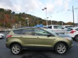 2013 Ginger Ale Metallic Ford Escape SE 2.0L EcoBoost 4WD #98287425