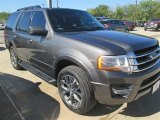 2015 Magnetic Metallic Ford Expedition XLT #98325596