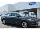 2015 Guard Metallic Ford Fusion SE #98384513