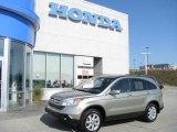 2007 Borrego Beige Metallic Honda CR-V EX-L 4WD #9828792