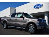 2014 Sterling Grey Ford F150 XLT SuperCrew 4x4 #98464487