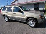 2001 Jeep Grand Cherokee Champagne Pearl