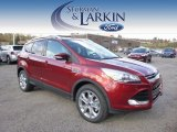 2015 Sunset Metallic Ford Escape Titanium 4WD #98637184