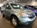 2010 Opal Sage Metallic Honda CR-V EX AWD #98682480