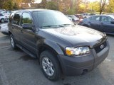 2006 Dark Shadow Grey Metallic Ford Escape XLT V6 4WD #98789355