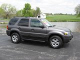 2006 Dark Shadow Grey Metallic Ford Escape XLT V6 #9880732
