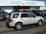 2009 Light Sage Metallic Ford Escape XLT V6 4WD #9880675
