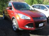 2014 Sunset Ford Escape Titanium 1.6L EcoBoost 4WD #98982623