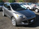 2014 Sterling Gray Ford Escape Titanium 2.0L EcoBoost 4WD #98982622