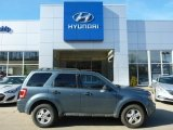 2010 Steel Blue Metallic Ford Escape XLT V6 4WD #99009116