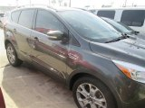 2015 Magnetic Metallic Ford Escape Titanium #99034253