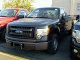 2014 Green Gem Ford F150 XL Regular Cab #99034424