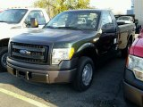 2014 Green Gem Ford F150 XL Regular Cab #99034422