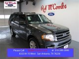 2015 Magnetic Metallic Ford Expedition Limited #99137898