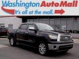 2011 Black Toyota Tundra Platinum CrewMax 4x4 #99201239